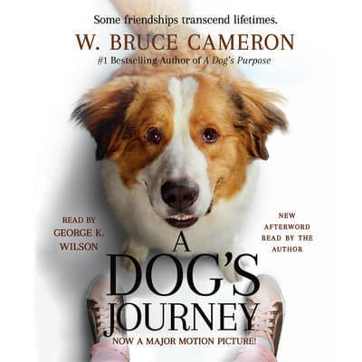 A Dog's Journey by W. Bruce Cameron audiobook