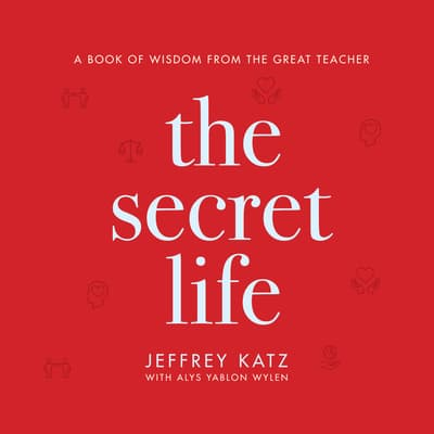 The Secret Life by Jeffrey Katz audiobook