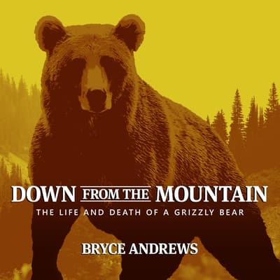 Down from the Mountain by Bryce Andrews audiobook