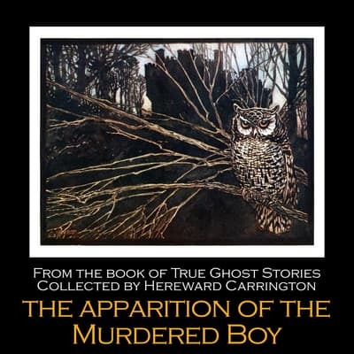 The Apparition of the Murdered Boy by Hereward Carrington audiobook