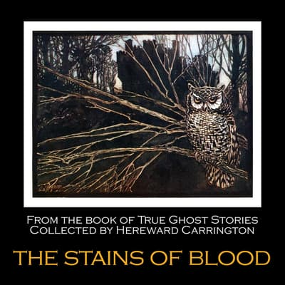 The Stains of Blood by Hereward Carrington audiobook