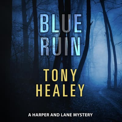 Blue Ruin by Tony Healey audiobook