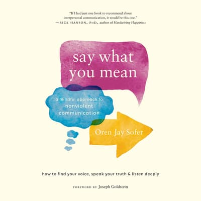 Say What You Mean by Oren Jay Sofer audiobook