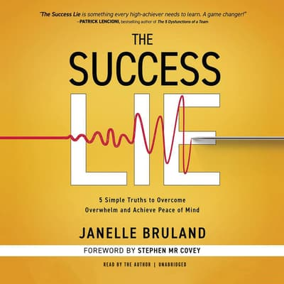 The Success Lie by Janelle Bruland audiobook
