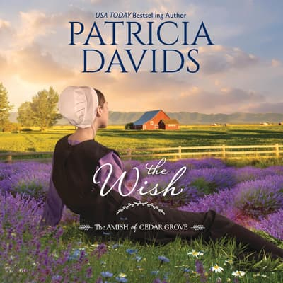 The Wish by Patricia Davids audiobook
