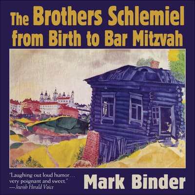The Brothers Schlemiel (From Birth to Bar Mitzvah) by Mark Binder audiobook