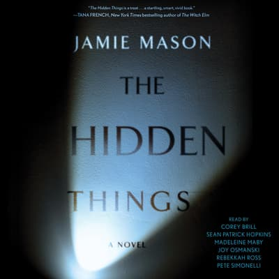 The Hidden Things by Jamie Mason audiobook
