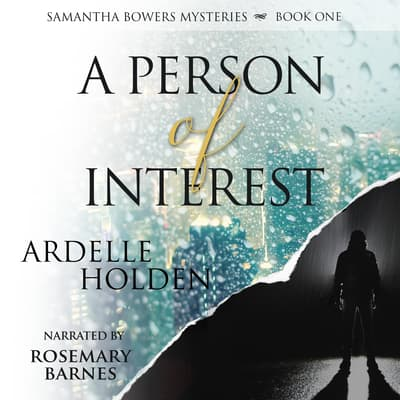 A Person of Interest by Ardelle Holden audiobook