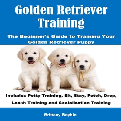 Golden Retriever Training: The Beginner's Guide to Training Your Golden Retriever Puppy by Brittany Boykin audiobook