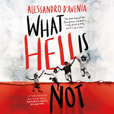 What Hell Is Not by Alessandro D'Avenia audiobook
