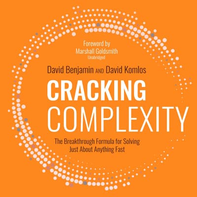 Cracking Complexity by David Benjamin audiobook