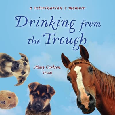 Drinking from the Trough by Mary Carlson audiobook