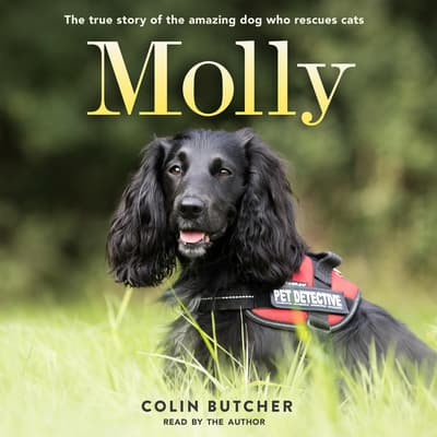 Molly by Colin Butcher audiobook