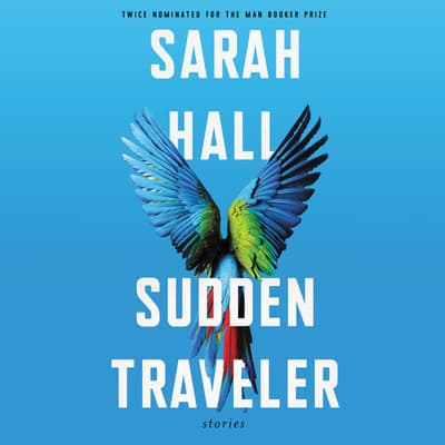 Sudden Traveler by Sarah Hall audiobook