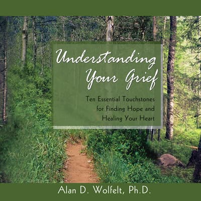 Understanding Your Grief by Alan D. Wolfelt audiobook