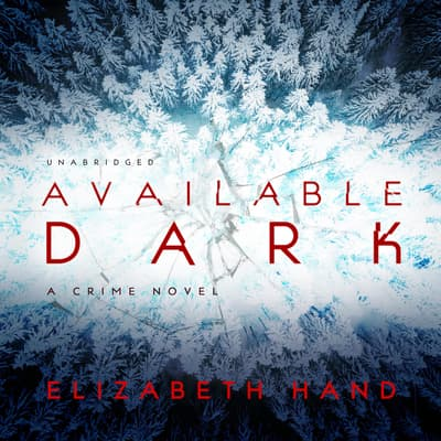 Available Dark by Elizabeth Hand audiobook