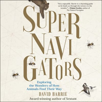 Supernavigators by David Barrie audiobook