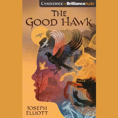 The Good Hawk by Joseph Elliott audiobook