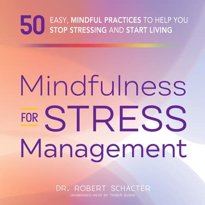 Mindfulness for Stress Management by Robert Schacter audiobook