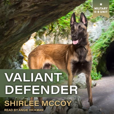 Valiant Defender by Shirlee McCoy audiobook