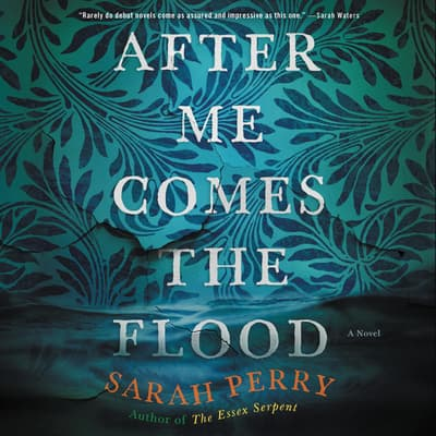 After Me Comes the Flood by Sarah Perry audiobook