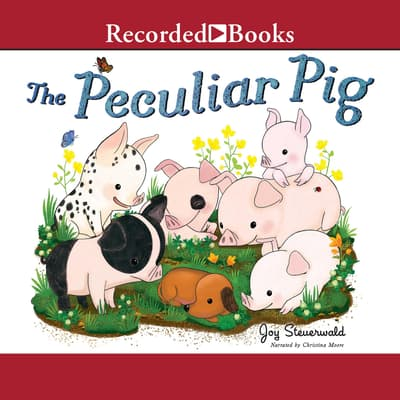 The Peculiar Pig by Joy Steuerwald audiobook