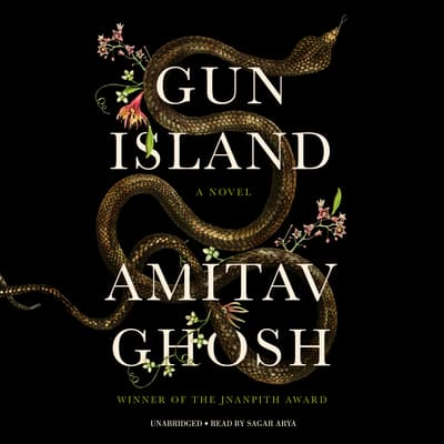 Gun Island by Amitav Ghosh audiobook