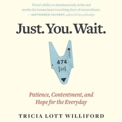 Just. You. Wait. by Tricia Lott Williford audiobook