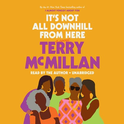 It's Not All Downhill from Here by Terry McMillan audiobook