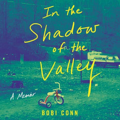 In the Shadow of the Valley by Bobi Conn audiobook