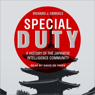 Special Duty by Richard J. Samuels audiobook