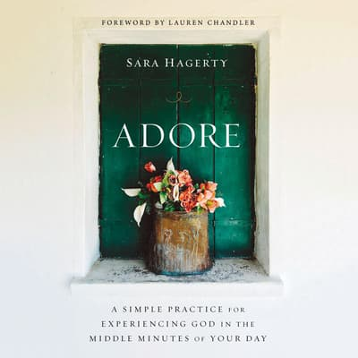 Adore by Sara Hagerty audiobook