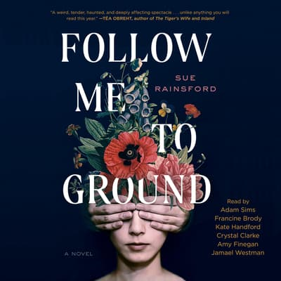 Follow Me To Ground by Sue Rainsford audiobook