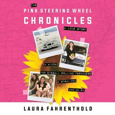 The Pink Steering Wheel Chronicles by Laura Fahrenthold audiobook
