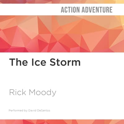 The Ice Storm by Rick Moody audiobook