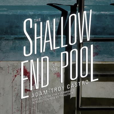 The Shallow End of the Pool by Adam-Troy Castro audiobook