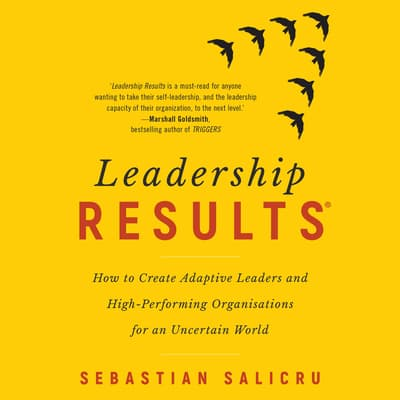 Leadership Results by Sebastian Salicru audiobook
