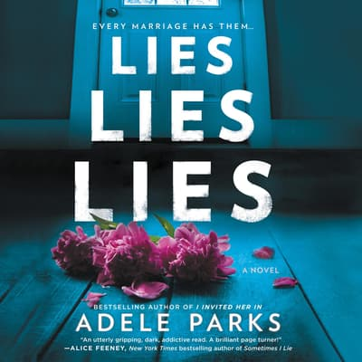 Lies, Lies, Lies by Adele Parks audiobook