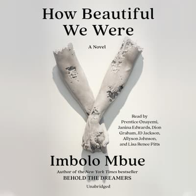 How Beautiful We Were by Imbolo Mbue audiobook