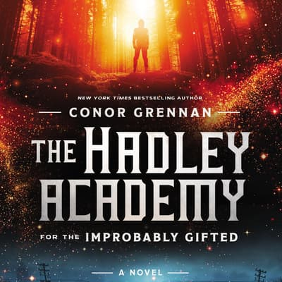 The Hadley Academy for the Improbably Gifted by Conor Grennan audiobook