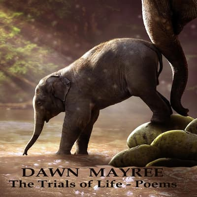 The Trials of Life - Poems by Dawn Mayree audiobook