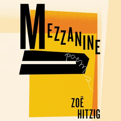 Mezzanine by Zoë Hitzig audiobook