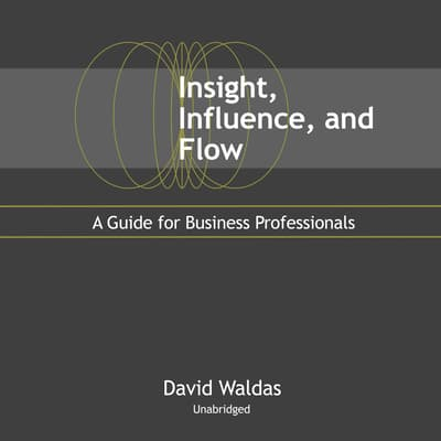 Insight, Influence, and Flow by David Waldas audiobook