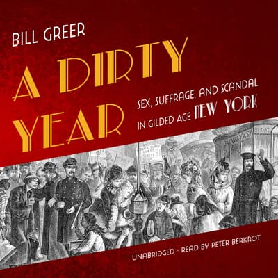 A Dirty Year by Bill Greer audiobook