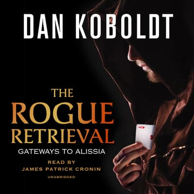 The Rogue Retrieval by Dan Koboldt audiobook