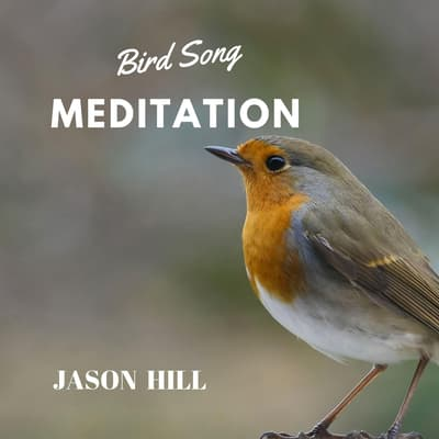 Bird Song Meditation by Jason Hill audiobook