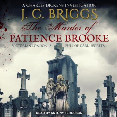The Murder of Patience Brooke by J.C. Briggs audiobook