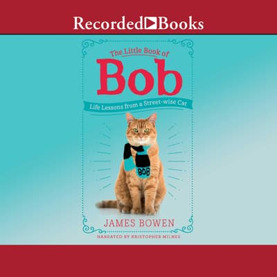 The Little Book of Bob by James Bowen audiobook