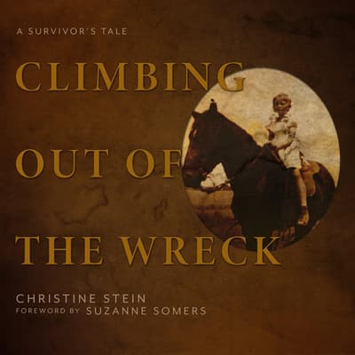 Climbing Out of the Wreck by Christine Stein audiobook