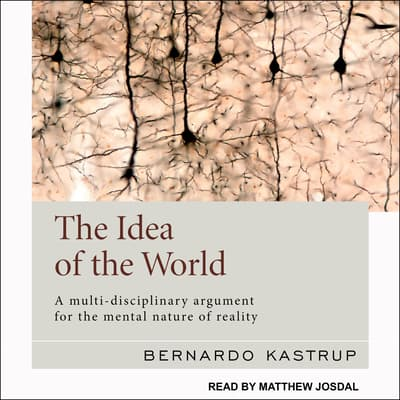 The Idea of the World by Bernardo Kastrup audiobook